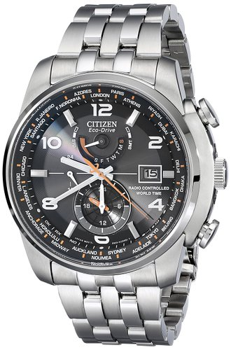 8. Citizen Men's -World Time Watch
