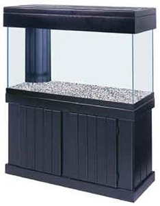 10. All Glass Aquarium AAG54214 Pine Canopy.