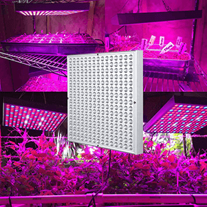 1. Hytekgro LED Grow Light