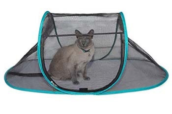 4: Nala and Company - The Cat House Outdoor Pet Enclosure for Indoor Cats