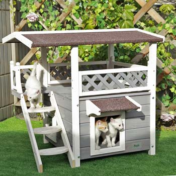 1: Petsfit Outdoor Cat House with Escape Door and Stairs, 1-Year Warranty
